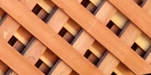 menu_redwood_lattice
